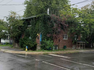 51 Patrick Street, Kingston Ontario, Canada