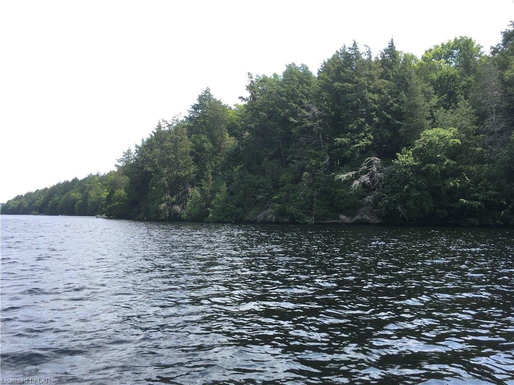 Cc Toad Lake Shores, Port Loring Ontario, Canada