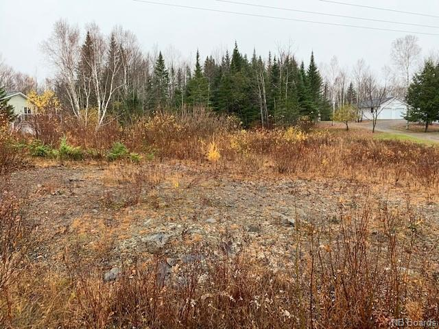 Lot 2011-1 Craig Street, Richibucto Road New Brunswick, Canada