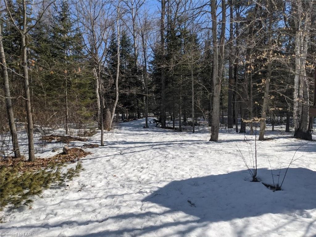 Spar Lake Road, Norland Ontario, Canada