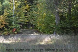 Johnson Bay Rd, Haliburton Ontario