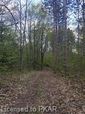 TROTTER-OITMENT Road, North Kawartha Township, Ontario, Canada