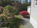 145 Haven Drive, Bridgewater Nova Scotia