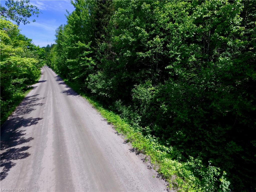 Tower Road, Sundridge Ontario, Canada