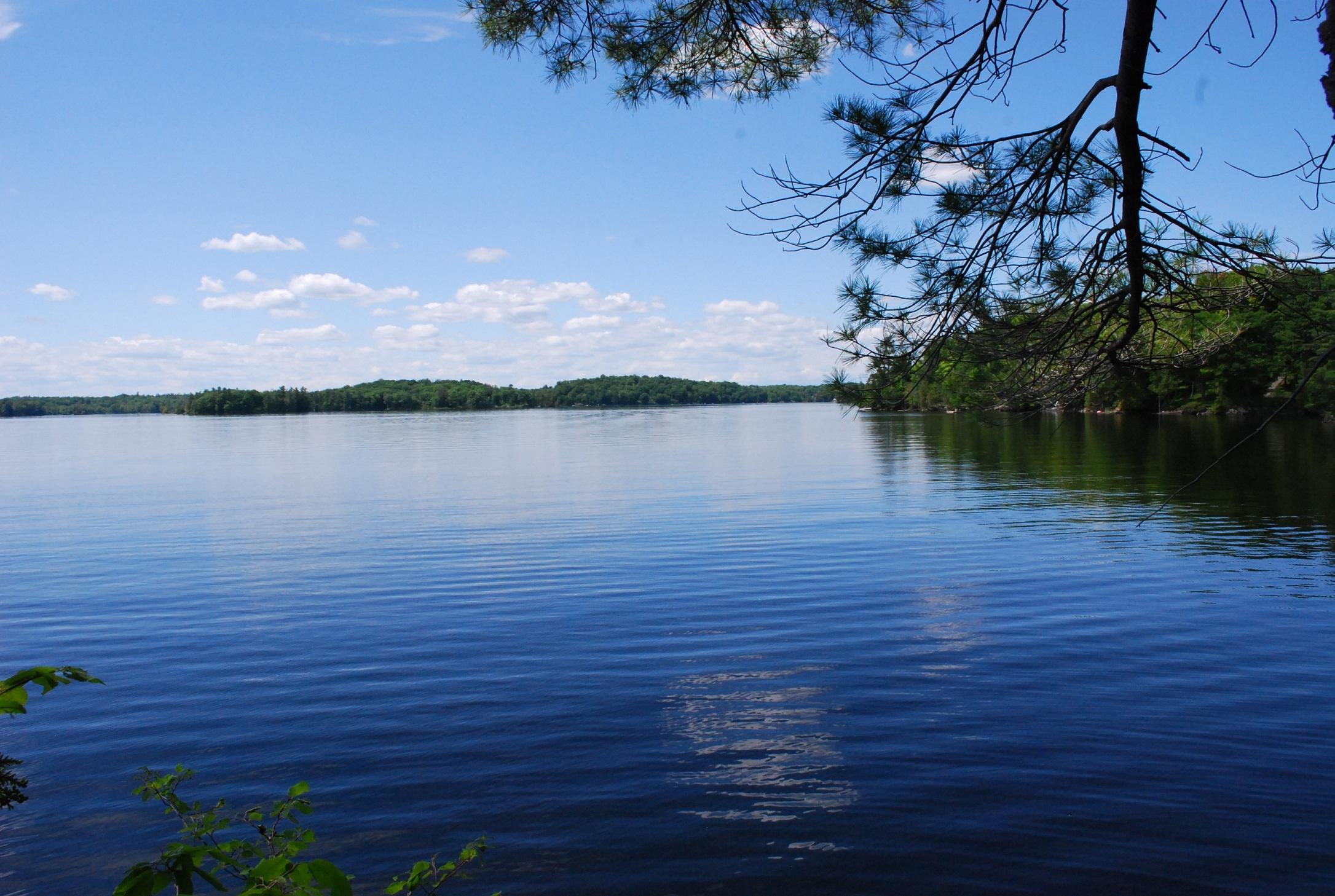 Pine Lane, Bobs Lake, Godfrey Ontario, Canada