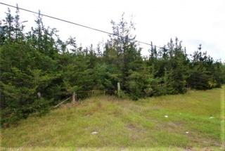 COUNTY ROAD 1, Yarker Ontario, Canada