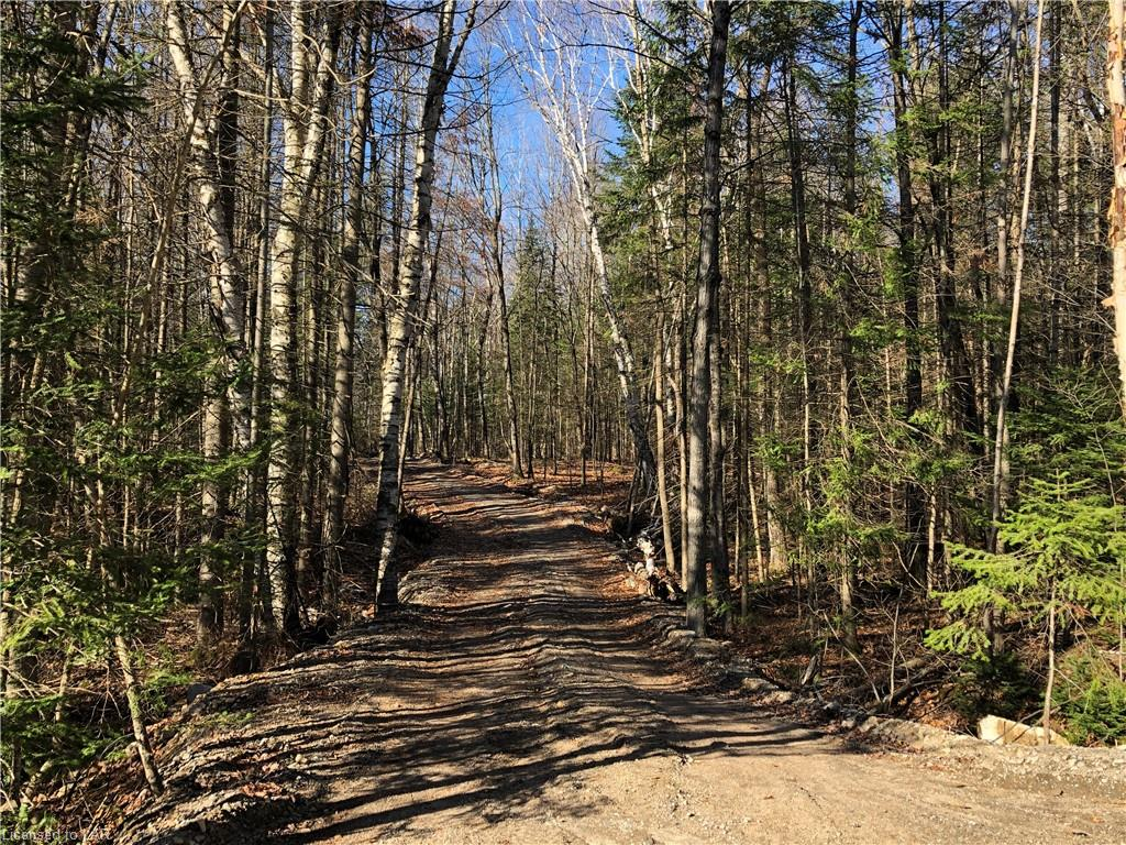 Lot 82 North Drive, Haliburton Ontario, Canada
