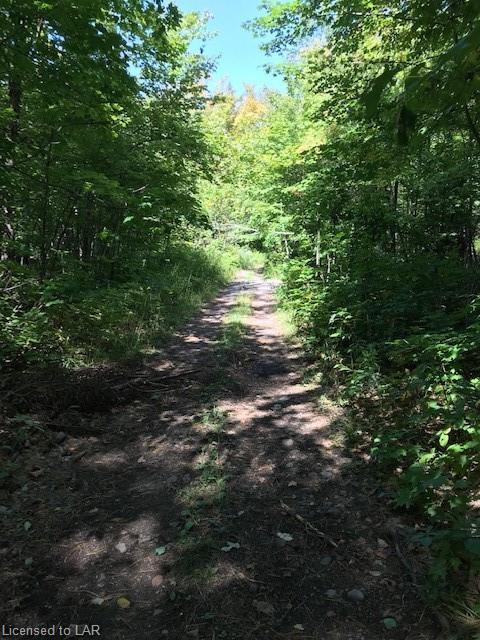 OLD NIPISSING Road, Commanda Ontario, Canada