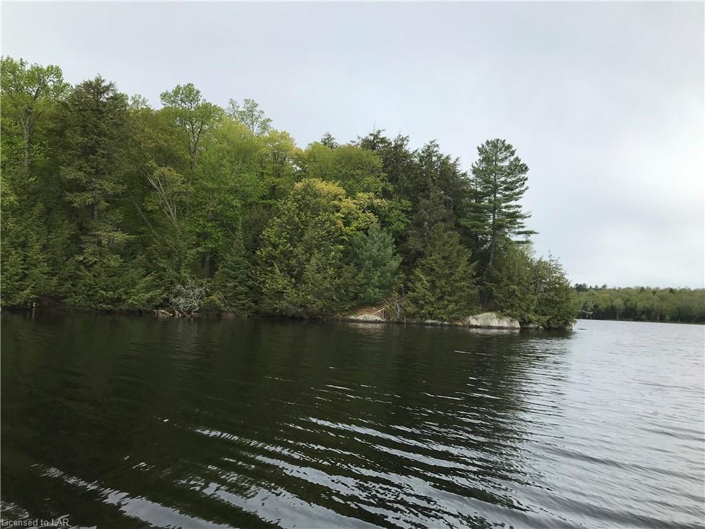 Wauquimakog (wilson) Lake, Port Loring Ontario, Canada
