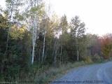 3 Gehrkes Golden Glade Road, Port Loring Ontario