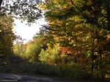 69-b Gehrkes Golden Glade Road, Port Loring Ontario