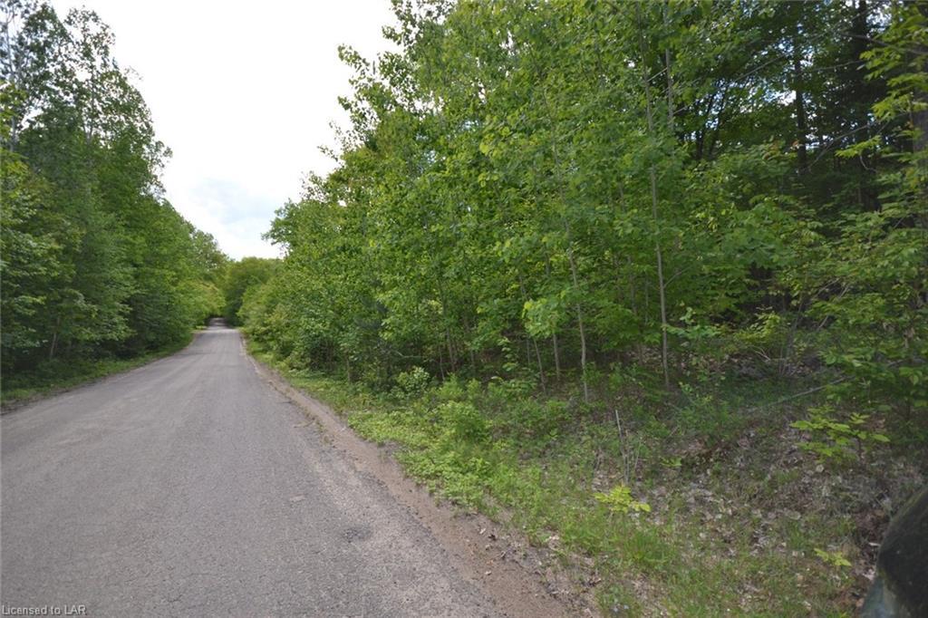 - Wigamog Road, Haliburton Ontario, Canada