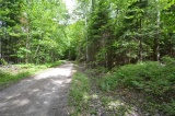 - TATTERSAL Road, Haliburton Ontario